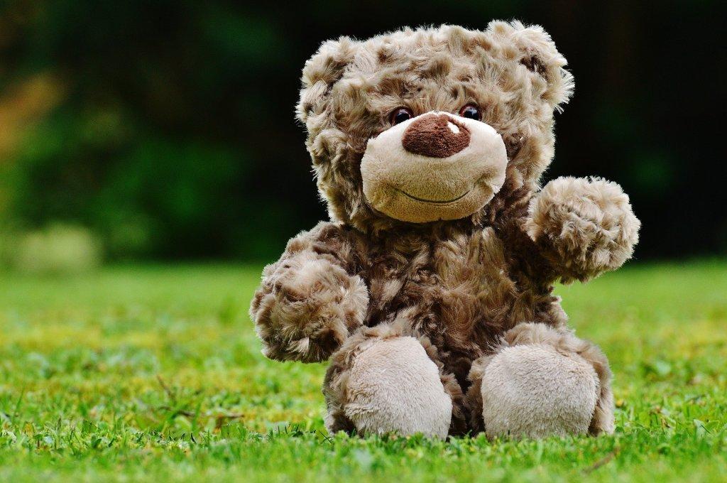 Teddybär auf einer Wiese